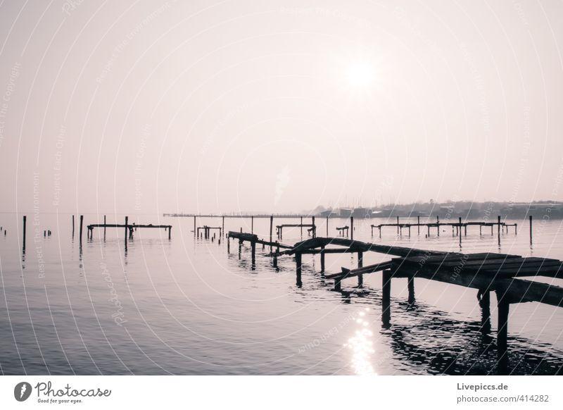 Rügen´s neuer Yachthafen Umwelt Natur Landschaft Wasser Himmel Wolkenloser Himmel Sonne Sonnenaufgang Sonnenuntergang Sonnenlicht Herbst Schönes Wetter Küste