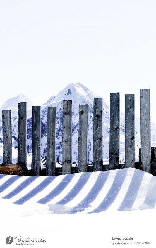 Zaunkönig Umwelt Natur Landschaft Himmel Wolkenloser Himmel Sonnenlicht Winter Schönes Wetter Schnee Felsen Berge u. Gebirge Zaunpfahl Stein Holz stehen frisch