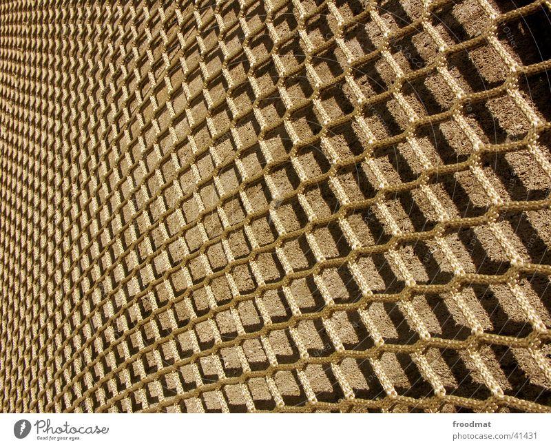 Gitternetz Sonne Architektur Perspektive Netz