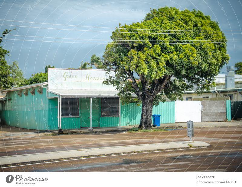 Douglas Street: Green Horizon Himmel Farbe Baum ruhig Haus Ferne Umwelt Wärme Straße Wege & Pfade hell Idylle leuchten authentisch retro Sehnsucht