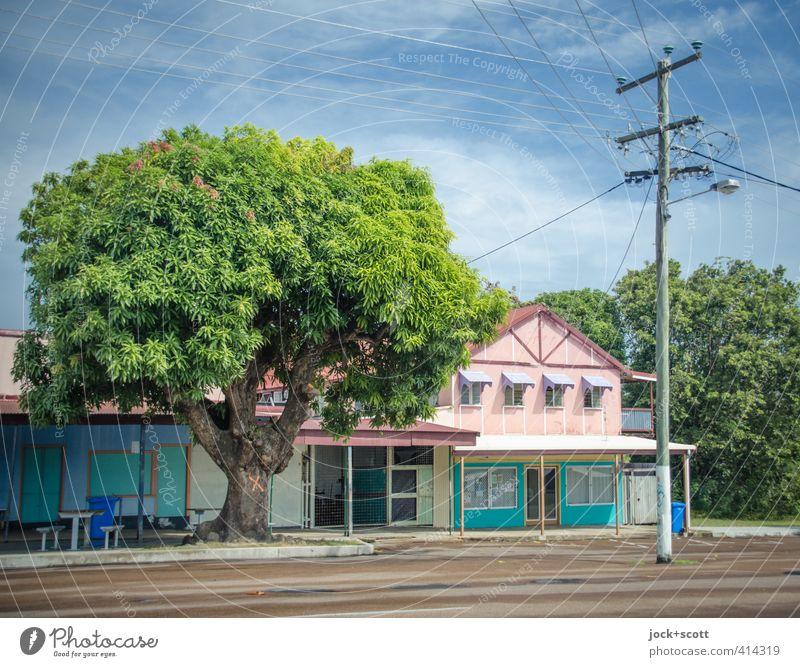 Douglas Street: 85 Baum exotisch Kleinstadt Haus Architektur Fassade Vordach Verkehrswege Straße Zeichen Kitsch retro ruhig Idylle Langeweile Umwelt Zeit