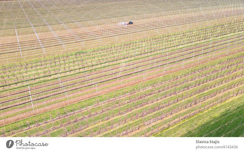 Luftaufnahme von landwirtschaftlichen Feld im Frühjahr. Sprayer sprüht Obstgarten Insektizid in Obstgarten , Frühling Saison. oben Antenne Ackerbau Agronomie