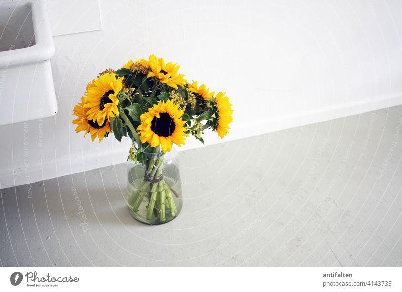 Still-Leben Blumenstrauß Vase Glas Sonnenblume Farbfoto Blüte Innenaufnahme Dekoration & Verzierung Blühend Frühling Natur Sommer grün Tag Blatt Atelier