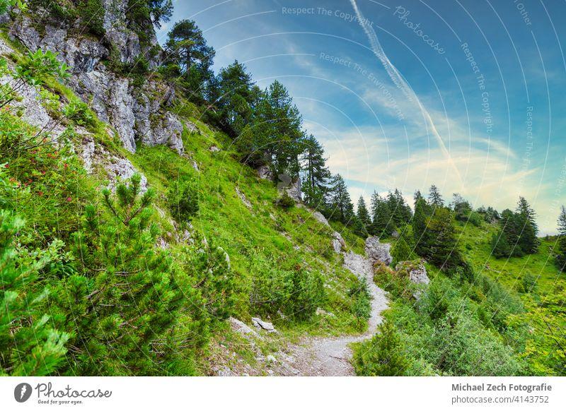 Sommerwanderweg in den Schweizer Alpen Natur wandern reisen Landschaft Tourismus malerisch Europa Berge u. Gebirge alpin Gipfel Ansicht Himmel Tal Nachlauf