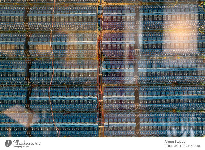 viele alte blaue Relais eines Oldtimer-Computers Hintergrund Holzplatte Kabel Kondensator chaotisch Schaltung Nahaufnahme Mitteilung komplex Anschluss