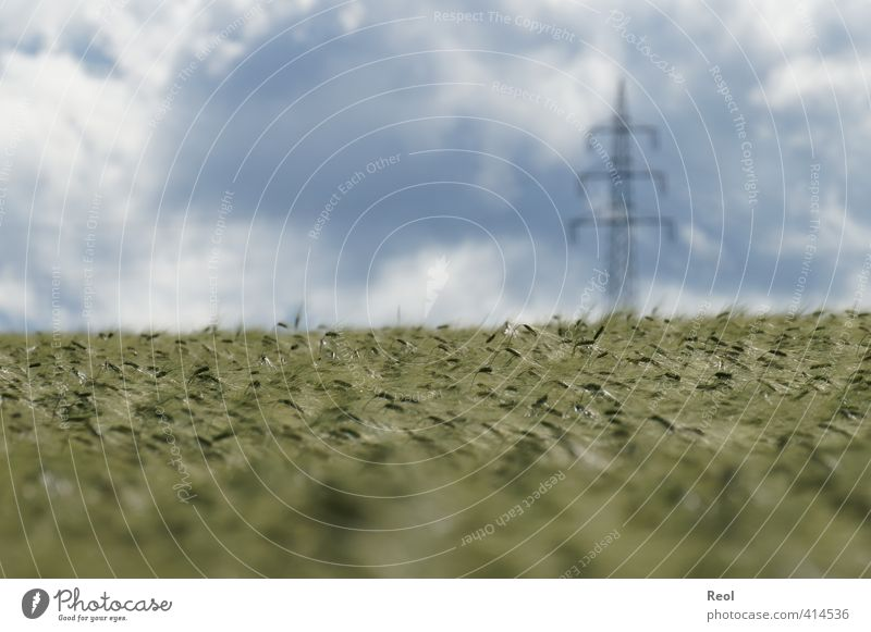 Energie für Mensch und Tier Himmel Natur blau grün Pflanze Sommer Landschaft Wolken Gras Horizont Feld Energiewirtschaft modern Schönes Wetter Strommast