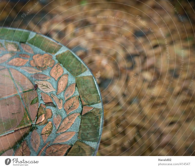 Herbst - Detail Garten Stimmung Blatt Laub grün braun Detailaufnahme Tisch Farbfoto Gedeckte Farben Außenaufnahme Schwache Tiefenschärfe Vogelperspektive