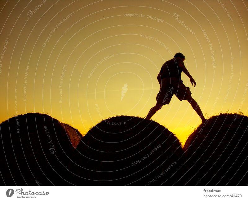 Sonntag #2 Erholung Sonnenuntergang Brigade Zufriedenheit Gleichgewicht rund Silhouette Physik Dämmerung Gegenlicht sehr wenige Fototechnik Getreiderollen
