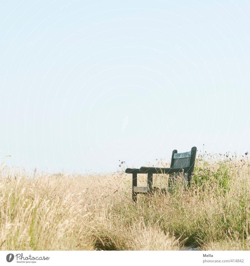 Ruheplatz Umwelt Natur Landschaft Sommer Gras Wiese Bank Erholung natürlich Sehnsucht Pause ruhig Zeit leer frei Sitzgelegenheit Farbfoto Außenaufnahme