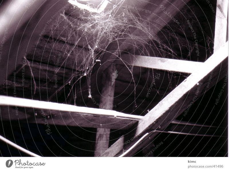 Spinnweben Spinnennetz Dachboden Licht Staub Luke Schwarzweißfoto