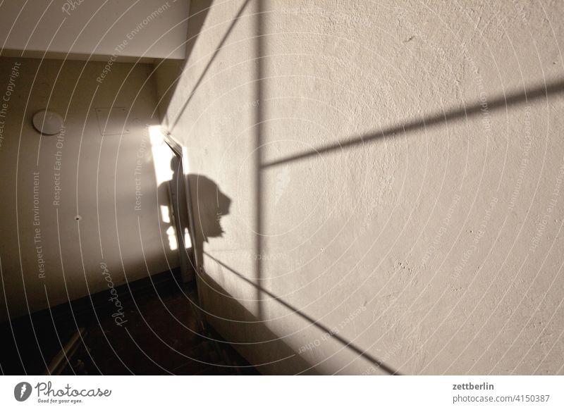Schatten im Treppenhaus absatz abstieg abwärts altbau aufstieg aufwärts licht mann mehrfamilienhaus mensch menschenleer mietshaus schatten stufe textfreiraum