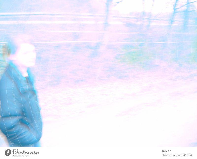 passing gehen Wald Frau hell