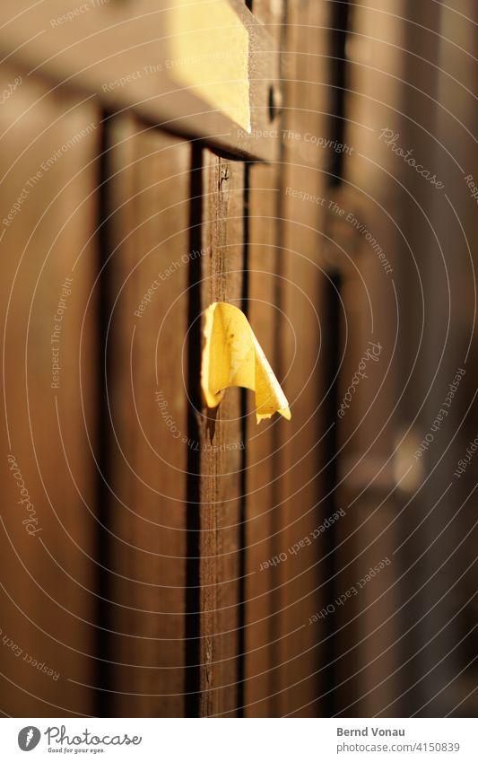 Sidenote Tür Zettel Notiz Farbfoto Wand alt schreiben Papier Menschenleer Sonnenlicht Abend Gegenlicht Bokeh Holz Holztür braun gelb