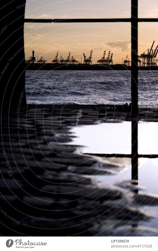 Hamburger Hafen Pfütze Hafenstadt Wasser Elbe Sonnenuntergang Kran Bodenbelag Stadt Landungsbrücken Geländer Spiegelung perpektive