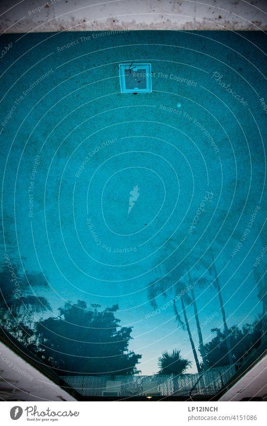FLORIDA PFÜTZE Pfütze Pool Palmen Wasser Urlaub blau reisen Spiegelung entspannt Swimmingpool Schwimmbecken