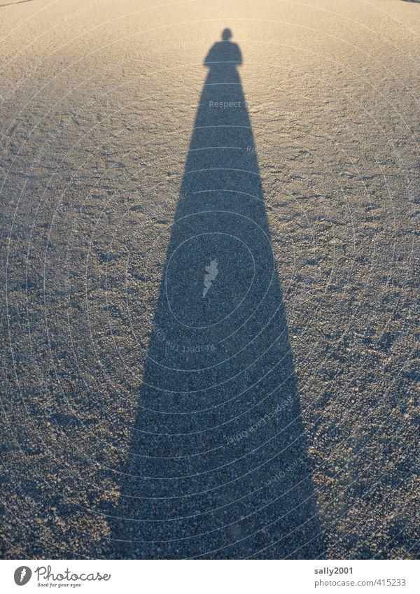 Wenn die Schatten länger werden... Mensch Frau Einsamkeit Erwachsene feminin Wege & Pfade außergewöhnlich groß stehen Perspektive Vergänglichkeit einzigartig