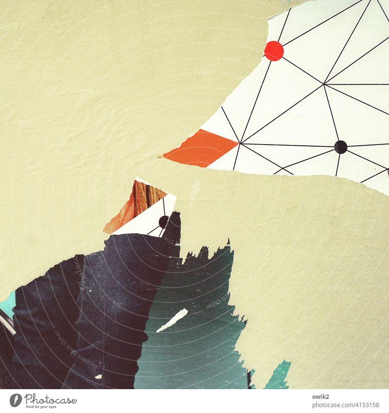 Oiseaux exotiques Detailaufnahme Werbebranche kaputt verfallen Zerstörung zerfetzt Teile u. Stücke Straßenkunst Oberflächenstruktur surreal Farbe abblättern