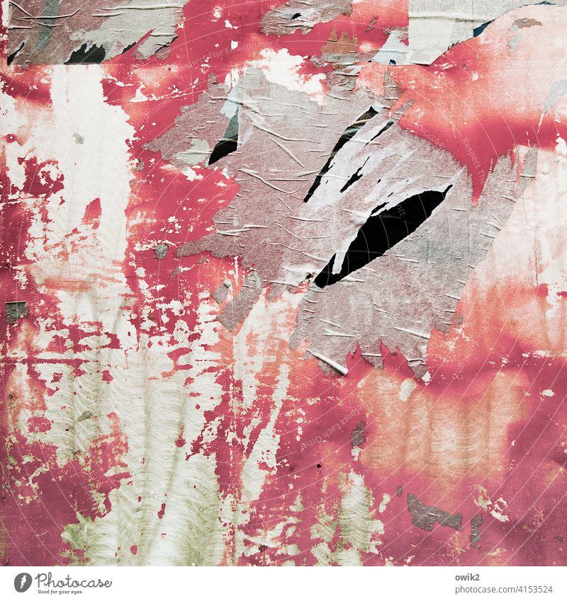 Altrosa Papier Plakat Werbung Plakatwand alt Wand Reste mehrfarbig Vergänglichkeit Muster Strukturen & Formen Poster Verfall Detailaufnahme abstrakt Spuren
