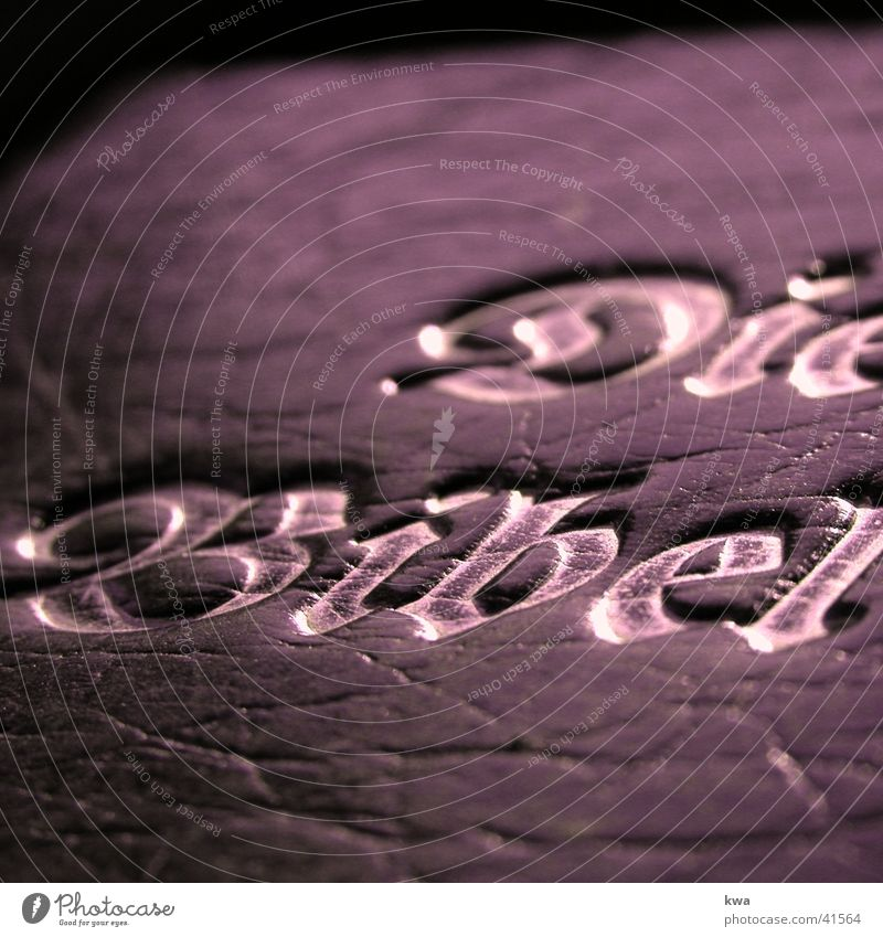 bibel Bibel Buch Altes Testament Dinge wort gottes