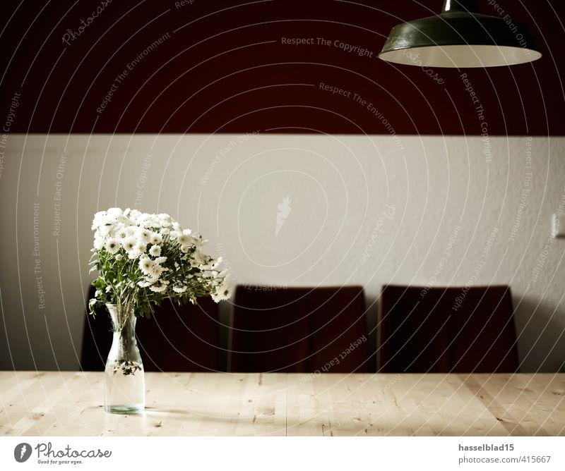 Flower Power Lifestyle Reichtum Stil Glück Krankheit Wohlgefühl Zufriedenheit Sinnesorgane ruhig Duft Blume Grünpflanze Blumenvase Vase Tisch Kinosessel Stuhl