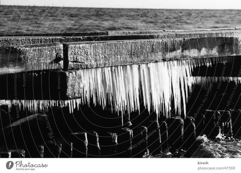 Eiszapfen am Steg Wasser Winter Strand Holz