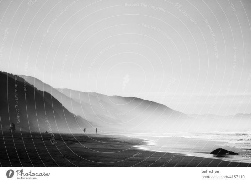 weil schönheit oft im verborgenen liegt Natur Surfer Surfen brenton on sea Ferien & Urlaub & Reisen Landschaft Freiheit Ferne Abenteuer Ausflug Tourismus Himmel