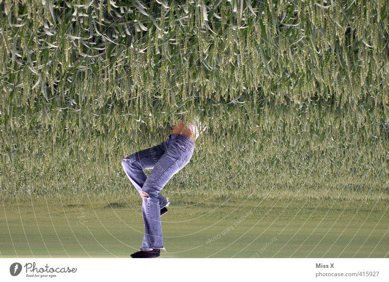 Das Raufallen und Reinhüpfen Mensch Gesäß Beine Fuß 1 Feld hängen lustig Gefühle Höhenangst bizarr kopfvoran Kopfsprung springen verkehrt Jeanshose tauchen