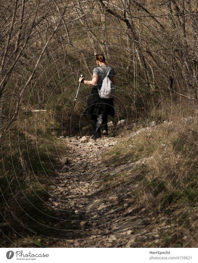 Wanderin mit Stöcken bergab gehend wandern Frau Rückansicht Berge u. Gebirge Natur Alpen Außenaufnahme steiniger weg Walking stick Gestrüpp Frühling Rucksack