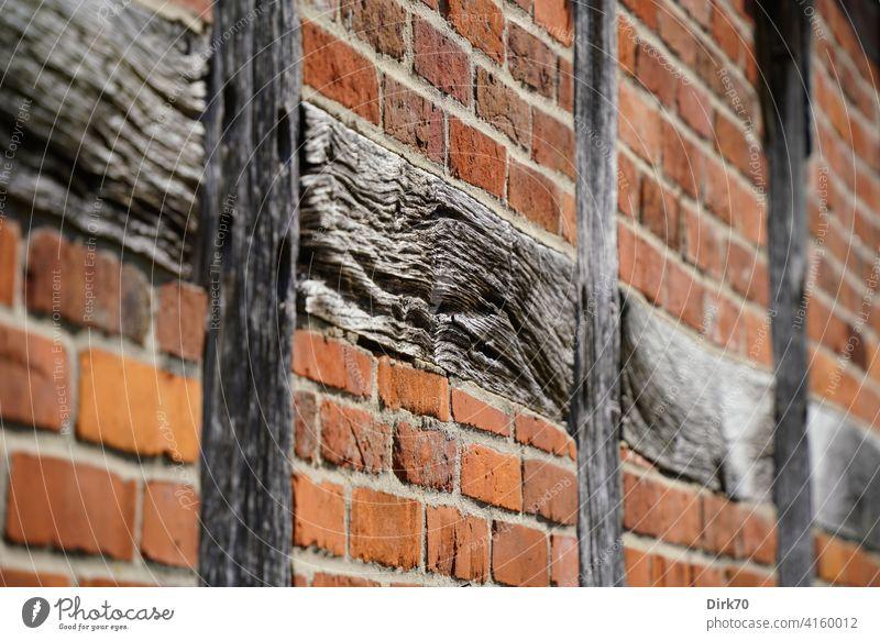 Altes Gemäuer: Ziegelwand mit Fachwerk Holz Balken Träger Fachwerkhaus Ziegelsteine Wand Fassade Detailaufnahme Stein mauerwerk Tragwerk struktur