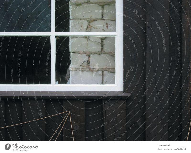 scheuneneinblick Scheune Fenster Holz Wand Fensterrahmen Architektur Glas Rahmen