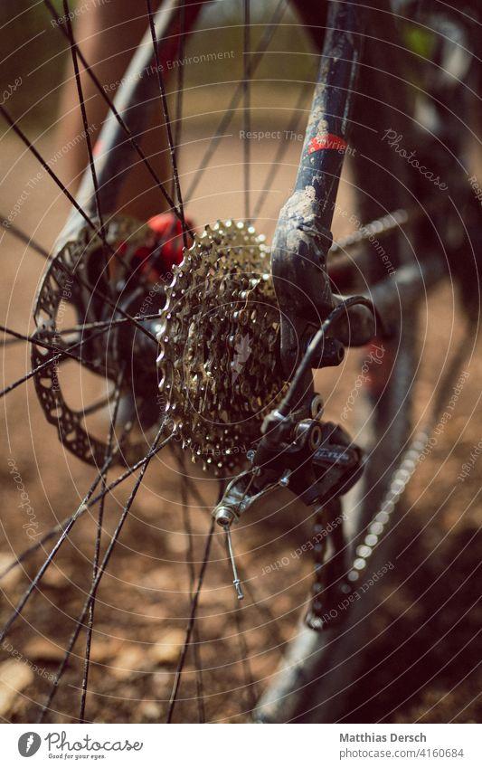 Mountainbike im Detail Fahrrad Freizeit & Hobby Fahrradfahren Detailaufnahme Speichenrad Mountainbiking Sport