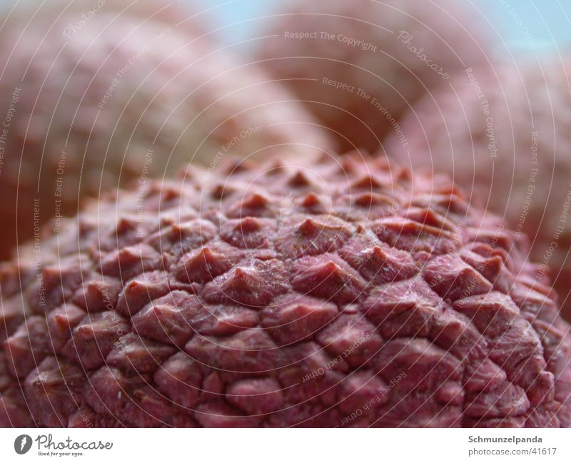 Litschi Gesundheit rosa Frucht exotisch Stachel Lychee