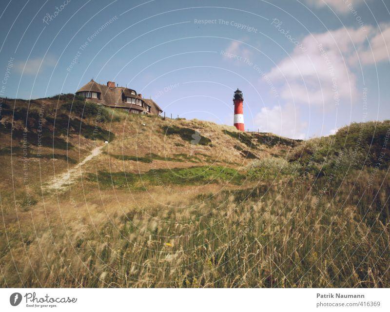 Leuchtturm in den Dünen Natur Landschaft Pflanze Himmel Wolken Schönes Wetter Wind Wärme Gras Sträucher Nordsee Ostsee Dünengras Haus Bauwerk Gebäude