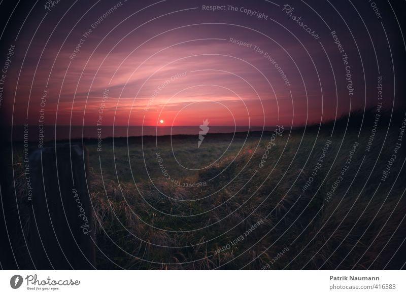 Sunset in dunes Natur Landschaft Wolken Nachthimmel Sonnenaufgang Sonnenuntergang Sonnenlicht Schönes Wetter Gras Sträucher Wellen Küste Strand Nordsee Meer