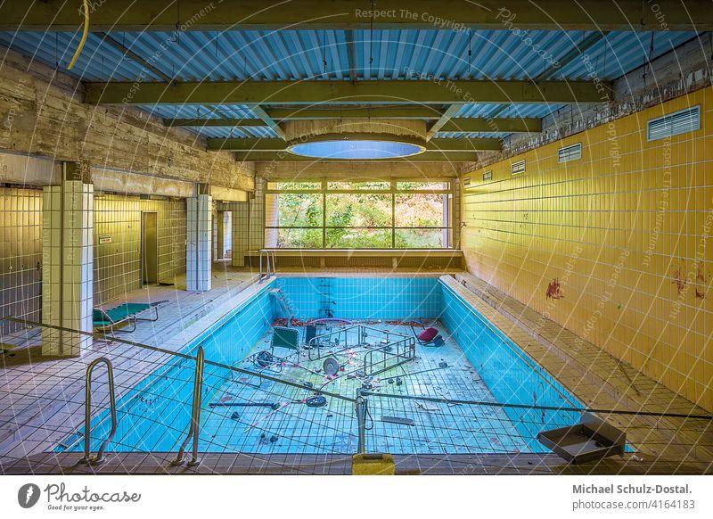 verlassener Pool mit Gartenblick abandoned urbex lostplace rotten decay deko interior interieur ruine Lost place Menschenleer lost places Ruine kaputt Becken