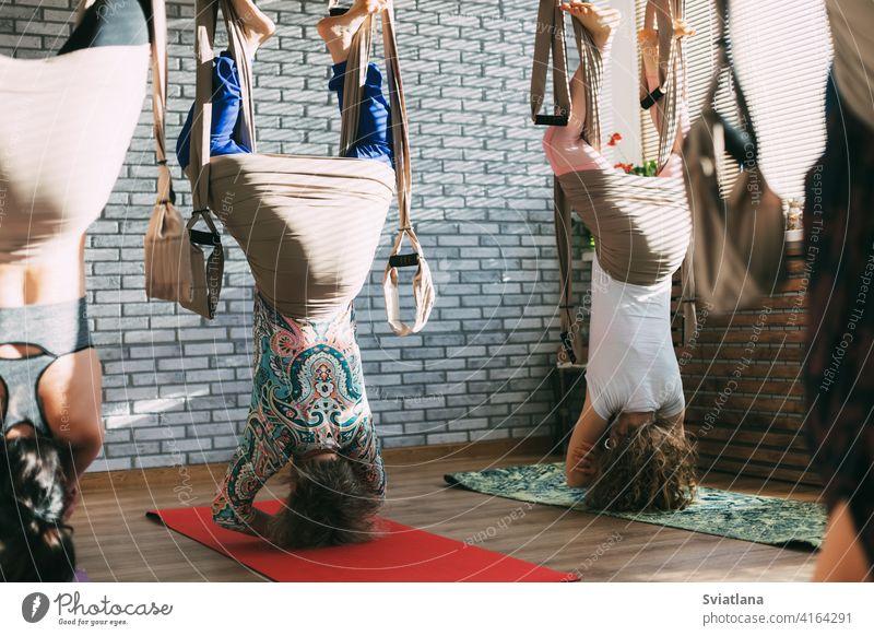 Eine Gruppe von jungen weiblichen Yogis, die Aerial Yoga in Hängematten in einem Fitness-Club machen. Aero Yoga, Sport, Fitness Übung Antenne Asana Frau