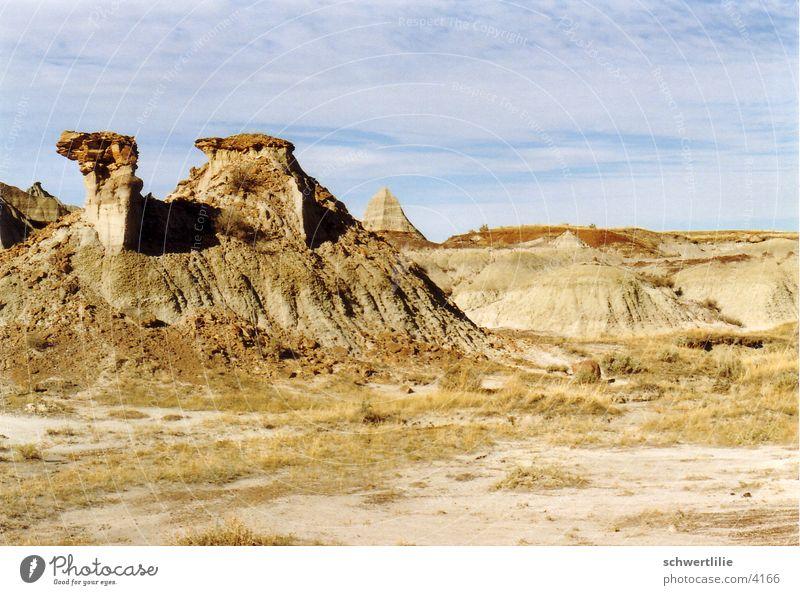 Dromedar in Kanada Felsen Kamel Pyramide Gesteinsformationen