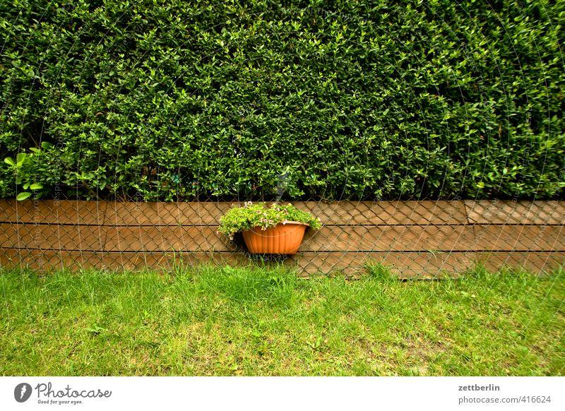 Blumenkasten Natur schön Sommer Freude Umwelt Wiese Blüte Garten Park Wohnung Freizeit & Hobby Lifestyle Häusliches Leben gut Zaun