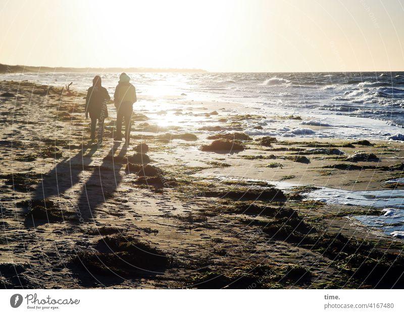Novembersonne ostsee meer strand wasser spazieren wild kühl sonnig gegenlicht sonnenlicht horizont urlaub erholung silhouette feierabend stimmung