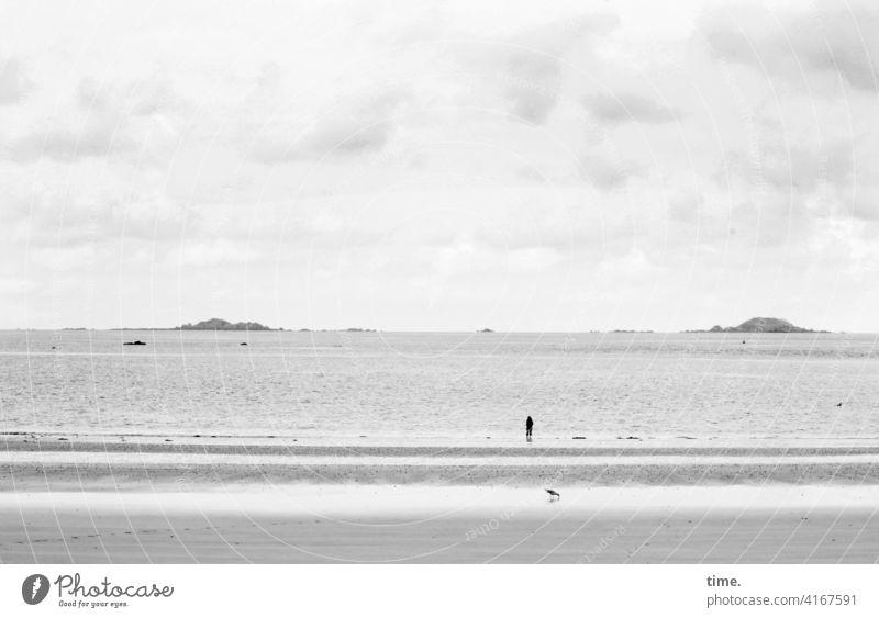 wer braucht schon Palmen und Cocktails strand meer horizont inseln wolken frau möwe wasser wellen weite einsamkeit fernweh sehnsucht
