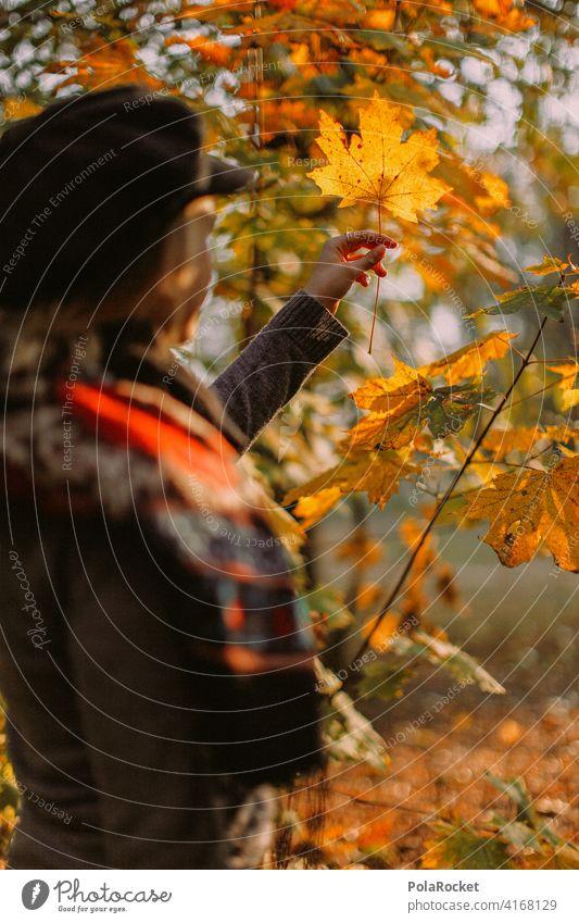 #A9# Herbstlaub im Park Außenaufnahme Herbstwetter wandern positiv Spaziergang Haare & Frisuren draußensein erleben Natur Junge Frau Herbststimmung