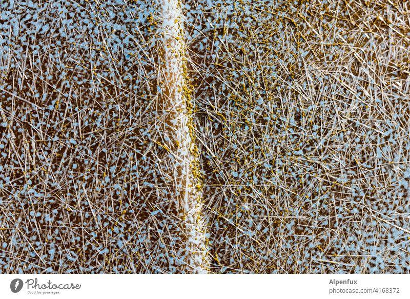 Molekulare Gemengelage Molekularbiologie verschimmeln schäbig Glasfaser Faser Fasern blau Viren mikroskopisch Bakterien bakterienstamm Infektion Angst