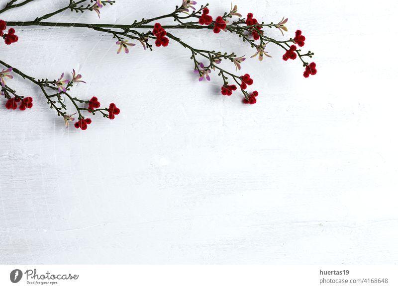 Weißes Holz Planke Textur für Hintergrund mit Blumen weiß Blumenstrauß Tisch Oberfläche Top Wand Holzplatte Ansicht Schreibtisch Frühling Natur Schönheit