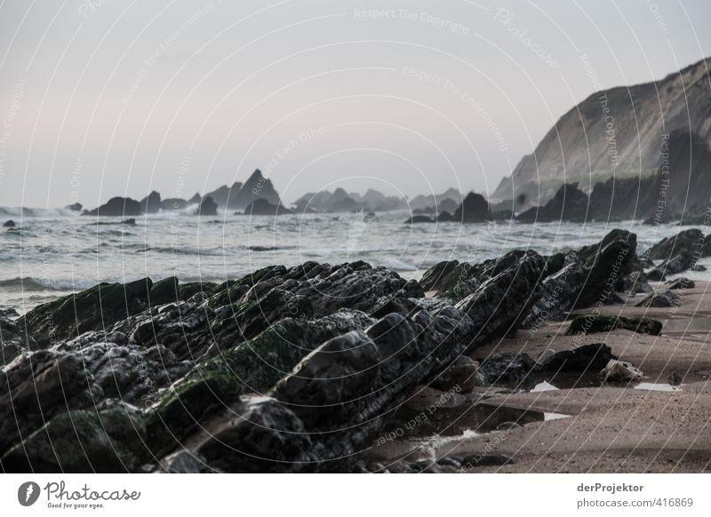 Felsen am Strand von Sao Pedro de Muel - Portugal Umwelt Natur Landschaft Pflanze Urelemente Sand Wasser Wassertropfen Himmel Sommer Klima Wetter