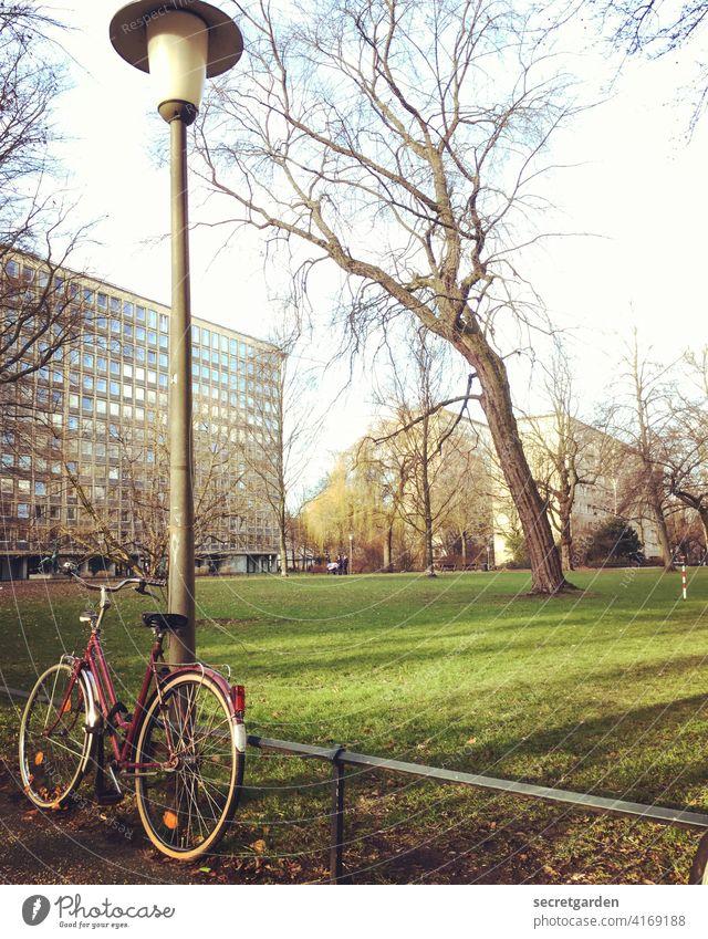 anlehnungsbedürftig Fahrrad Fahrradweg Parkplatz Laterne Beleuchtung Wege & Pfade Architektur Gebäude Hochhaus Hamburg Baum Wiese Außenaufnahme Stadt Zaun