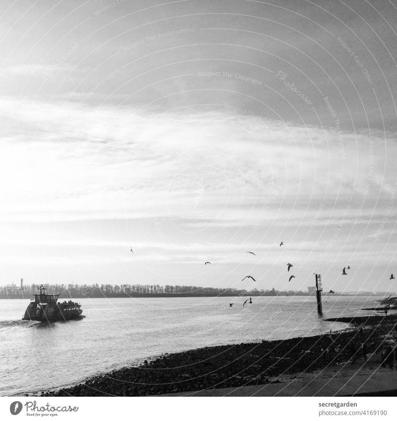 Oh wie schön ist Panama! Hamburg Fähre Fahrt Fahrtwind Möwe Schwarzweißfoto Elbe Wasser Schifffahrt Außenaufnahme Fluss Stimmung Wehmütig Hamburger Hafen