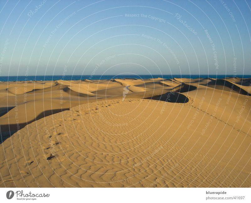 Vergängliche Spuren Himmel Ferien & Urlaub & Reisen gelb Farbe Sand Linie gold Horizont Wüste Stranddüne