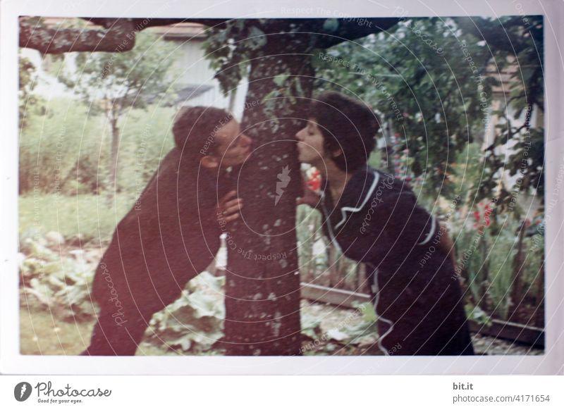 Küsse unterm Apfelbaum... Paar Liebe Verliebtheit verliebt Herz Gefühle Mann Romantik Valentinstag Partnerschaft Liebesbekundung Glück Sympathie Liebeserklärung