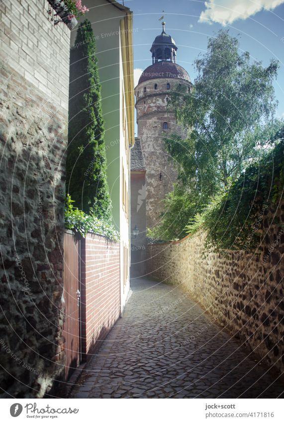 kleine enge alte Gasse Architektur Weltkulturerbe Altstadt Baum Efeu authentisch lang historisch Stil Vergangenheit Altertum Steinmauer Kopfsteinpflaster