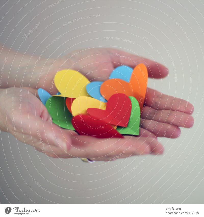 Herzen zu verschenken Mensch Frau Jugendliche schön grün Hand rot Erwachsene gelb 18-30 Jahre Liebe feminin Glück natürlich orange offen